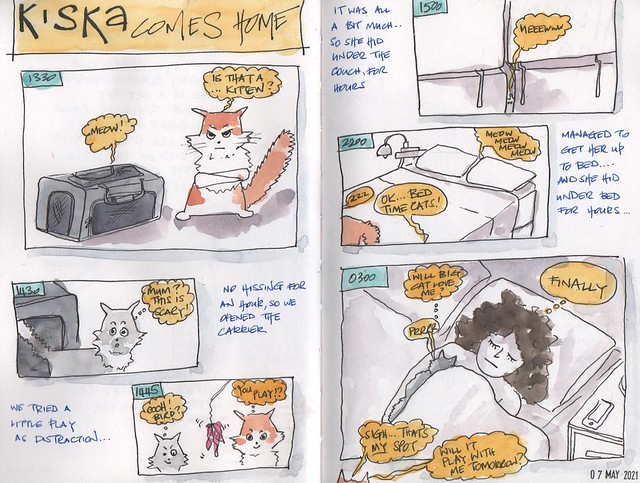 20210507 - kiska comes home