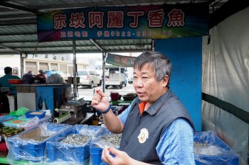 澎湖魚市場巡禮 達人帶你魚市場走透透看澎湖小管和競標漁獲現場!