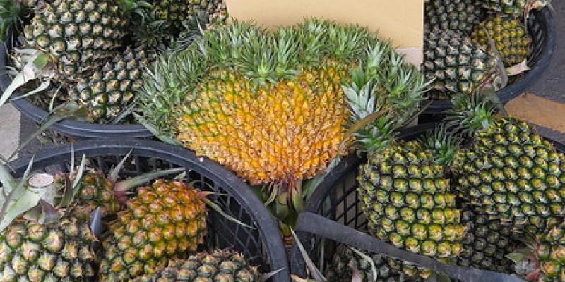 【防疫日誌17】買水果看見連體鳳梨