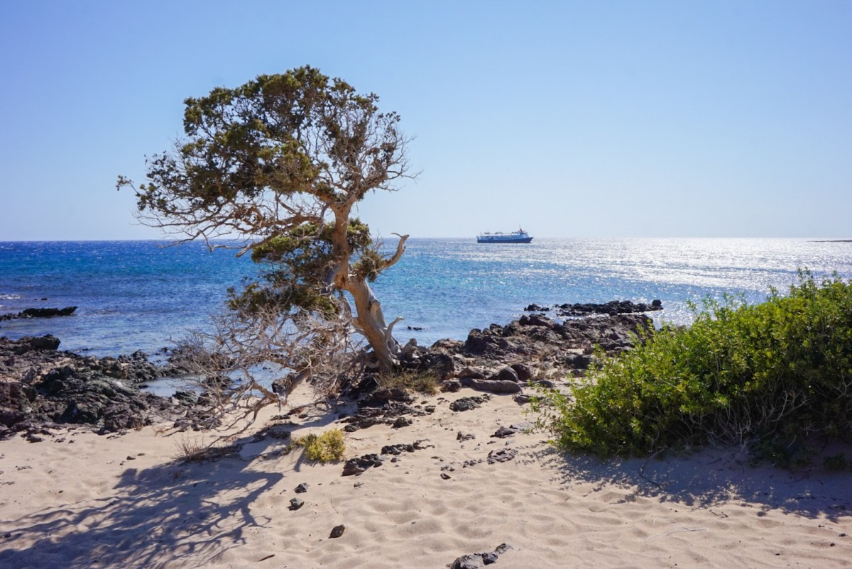 Chrissi-saari, Kreeta