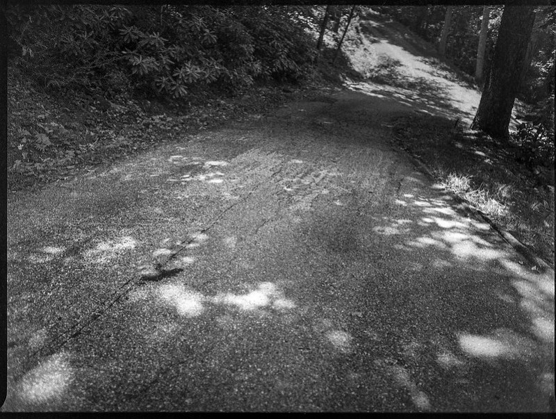 single lane mountaint roadway, speckled light, Lakey Gap Heights, Black Mountain, NC, Mamiya 645 Pro, mamiya sekor 45mm f-2.8, Bergger Pancro 400, Ilfosol 3 developer, 6.18.21
