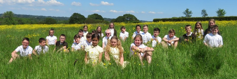 2021 July Windmill School Pictures