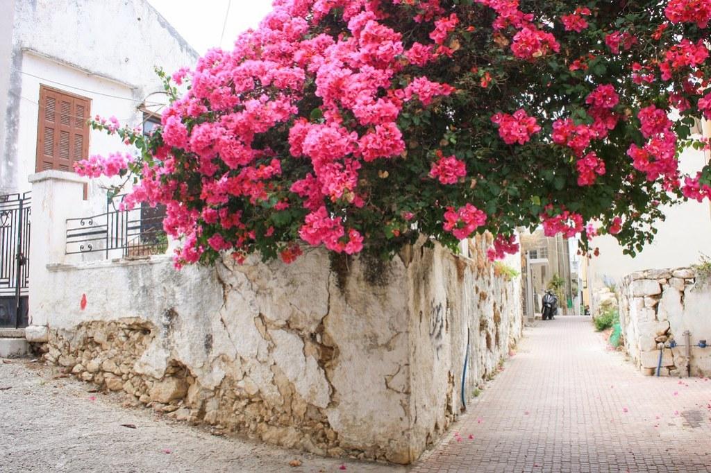 Kalives, Kreeta