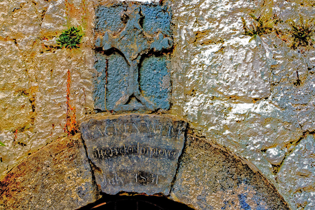 THE LACKEN WELL [I HAD BELIEVED THIS TO BE A HOLY WELL]-195699