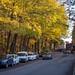 Östervägen in Autumn 2