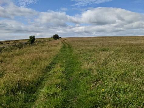 Priddy Walk