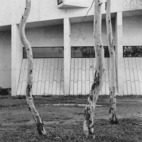 Outside the National Gallery in Canberra, in about 1993