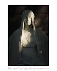 Melaten Friedhof Köln 247495F