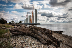 Siemens from beach log
