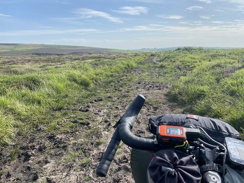 On the moors