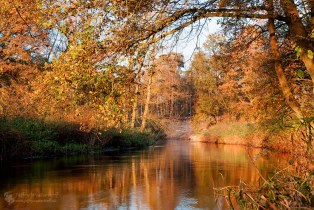 Autumn at river Dinkel