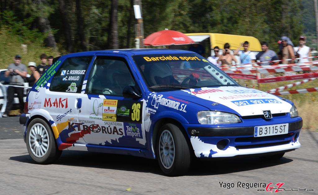 x_rally_sur_do_condado_41_20150307_1976725485