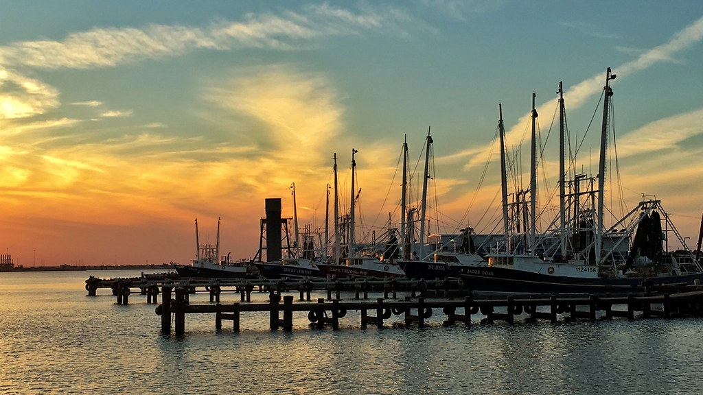 Shrimping Fleet at Port Arthur, Texas
