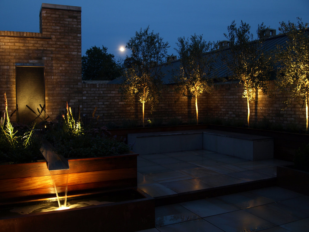Garden Lighting Roof Terrace Cambridge Olive Trees Uplit