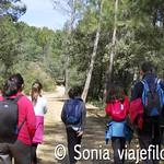 Viajefilos en Albacete 17