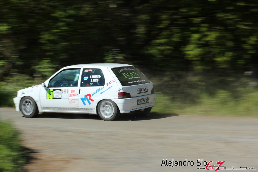vi_rally_comarca_da_ulloa_88_20150307_1062853580