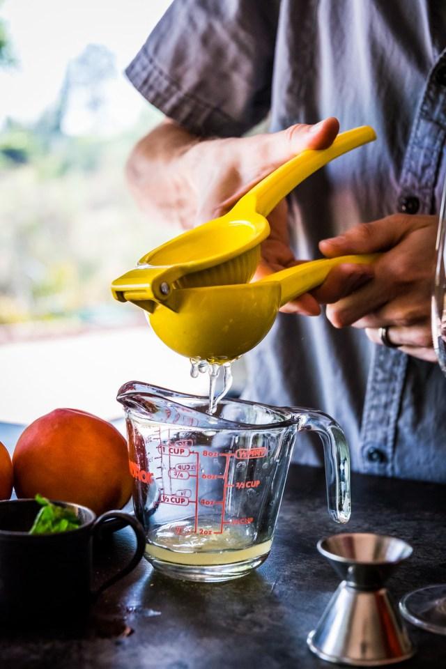 fresh-squeezed lemon juice