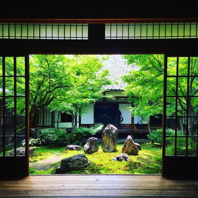 What a beautiful Japan Beautiful garden #kyoto #temple #green #garen #beautiful #kenniji #gorgeous #parfect #traditional #japan #japantrip #jp_gallery #zen #京都 #庭 #建仁寺 #禅 #美しい #みどり #東京カメラ部 #やっぱココが好き #iPhone #fullさんぽ