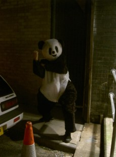 Panda Problems