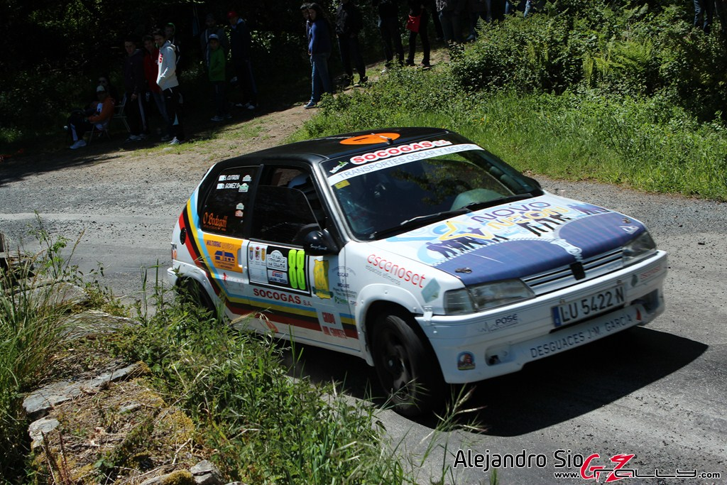 vi_rally_comarca_da_ulloa_183_20150307_2015534457