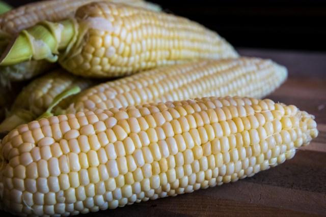 sweet summer corn