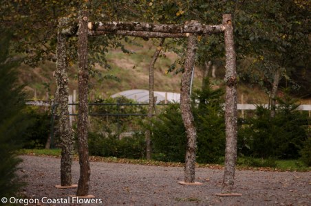 Black Walnut Chuppah