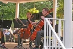 Cello Celli 003