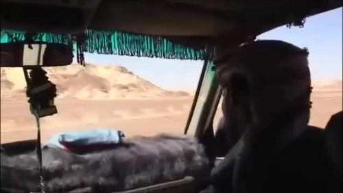 Egypt 2013 ④ to the Sahara-2
