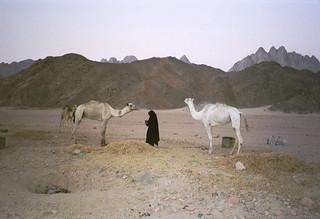 Ägypten-2001-162