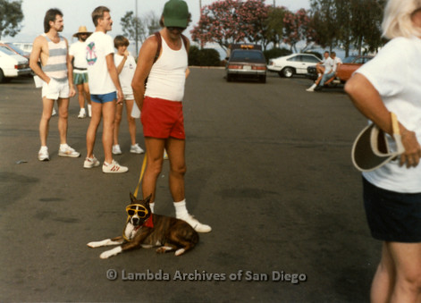 P197.009m.r.t San Diego Walks For Life 1988: Man with dog in a parking lot with other walkers