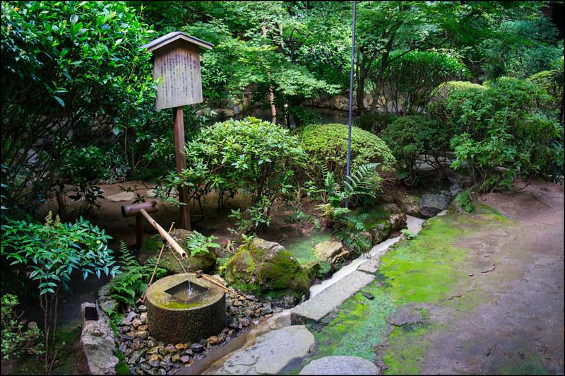 Pileta de agua del jardín del templo Ryoanji