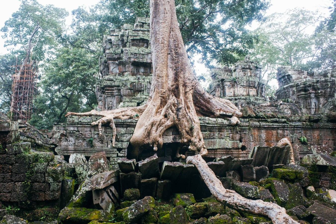 cambodia_digital_12