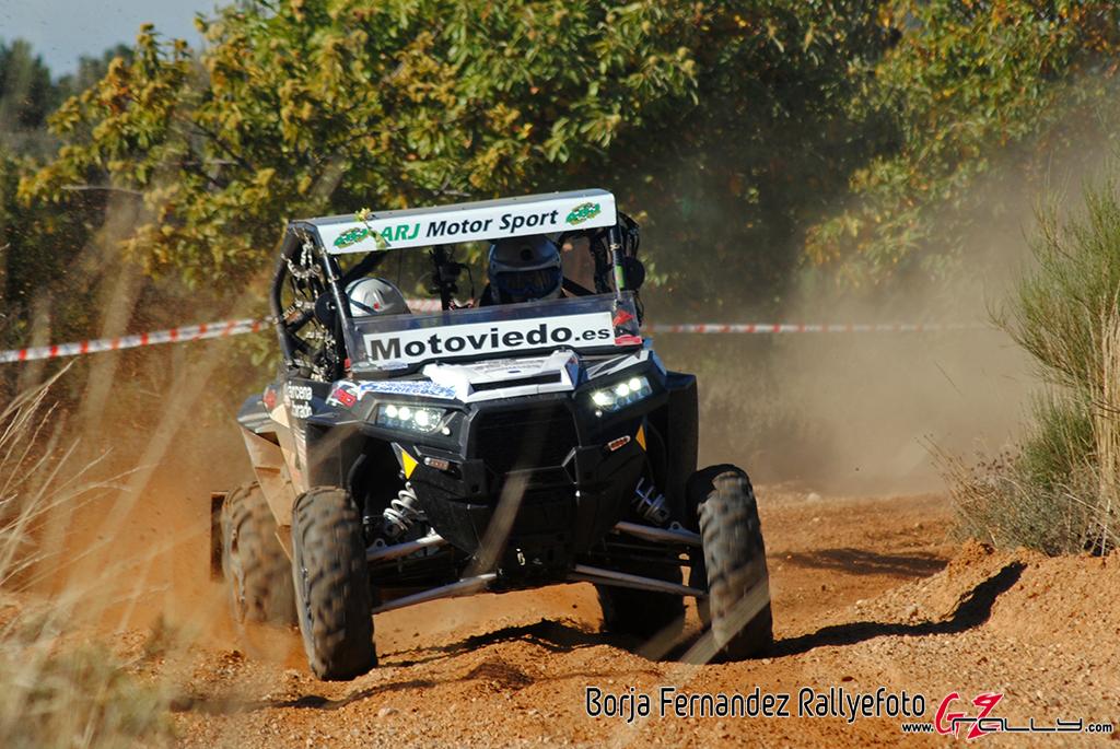 vi_rallysprint_de_tierra_de_sariegos_-_borja_fernandez_7_20161101_1364655704