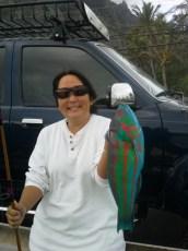 Caught using fresh tako. On a tiger stik. Shimano reel. 15 lb test.