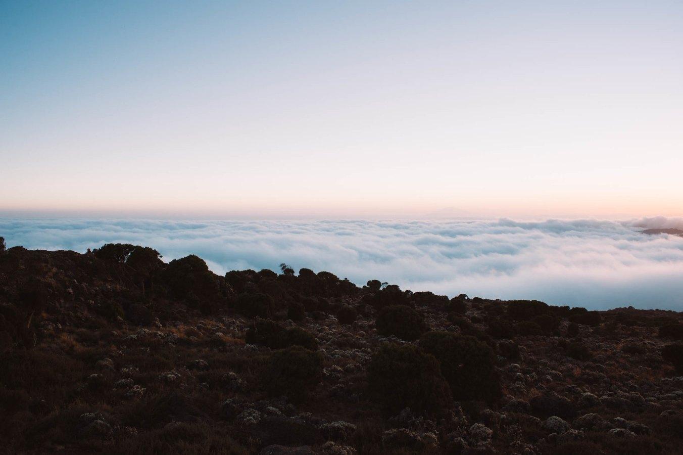 Kilimanjaro_13