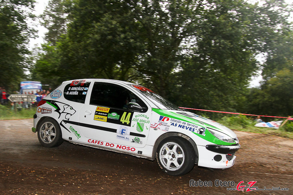 rally_sur_do_condado_2012_-_ruben_otero_279_20150304_1312184334