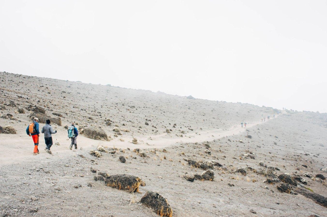 Kilimanjaro_28