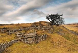 Limestone-Ridge