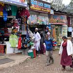 12 Viajefilos en Sri Lanka. Nuwara Eliya 38