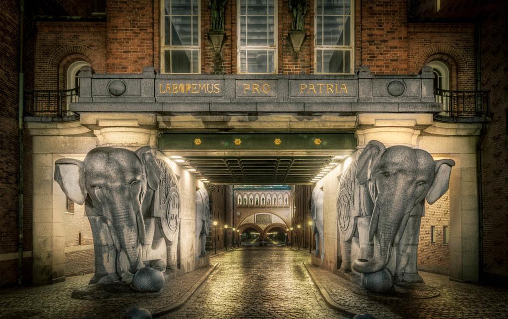 Elephant and Elephant
