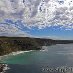 Viajefilos en Australia. Kangaroo 23