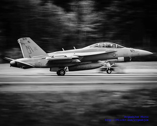 Black and White of a Touching VAQ-129 Vikings' EA-18G Grow ...