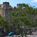 03 Viajefilos en el Prado, La Habana 16