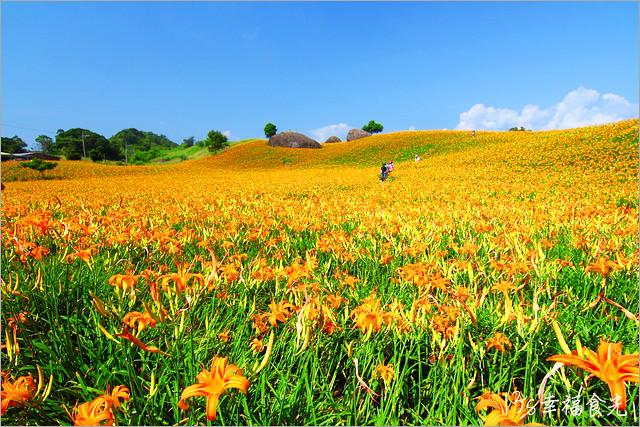 13S_HLS_CO16 | 【花蓮赤柯山金針花】2016花蓮金針花季-赤柯山金針花拍照景點-赤柯山三顆巨石-2016金… | Flickr