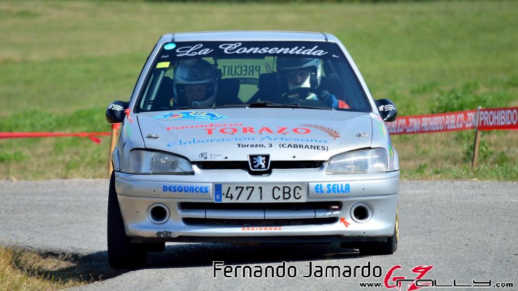53_rally_princesa_de_asturias_2016_-_fernando_jamardo_82_20160913_1849571745