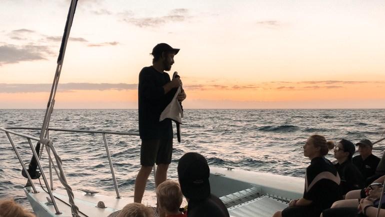 MANTA RAY NIGHT SNORKEL WITH SEA PARADISE
