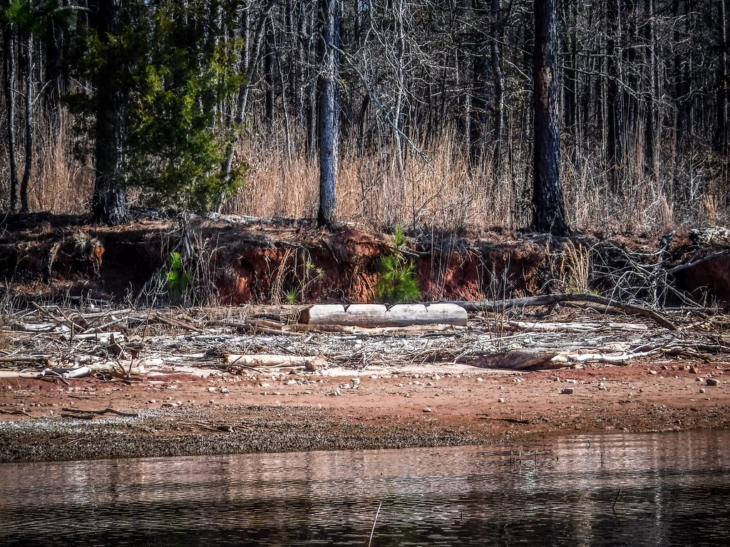 Clark Hill Reservoir-64