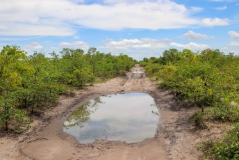 De kuilen in Savuti waren gelukkig niet meer zo diep als in Moremi, maar het terrein was hier ook niet altijd even makkelijk.