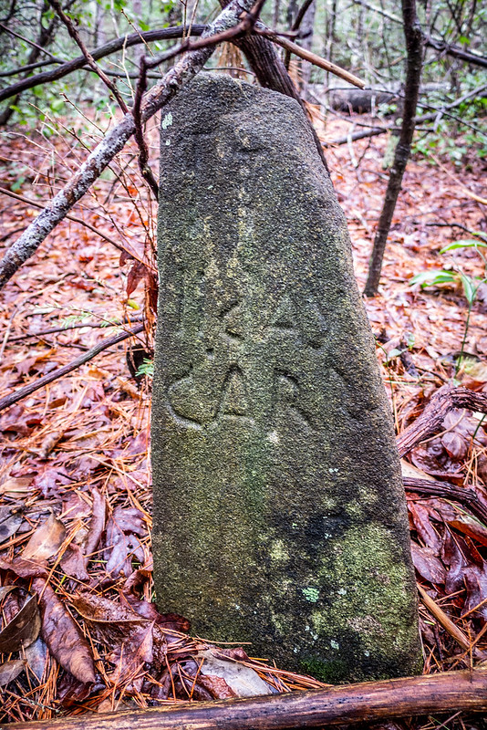 Tall Pines Preserve and South Saluda Church Cemetery-64