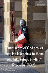 Saturday Proverbial Wisdom: Find protection as you take refuge in Him.